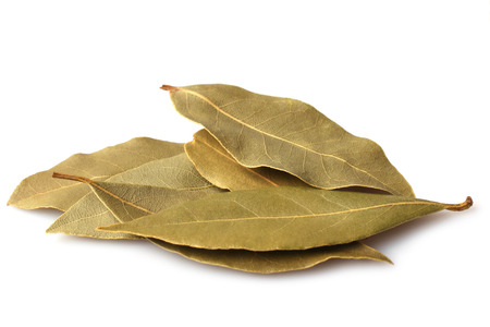 Bay leaves on white background
