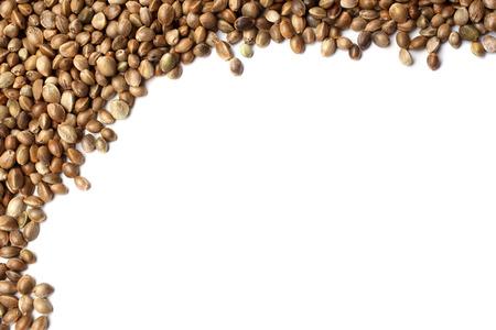 marihuana: Las semillas de c��amo en el fondo blanco Foto de archivo
