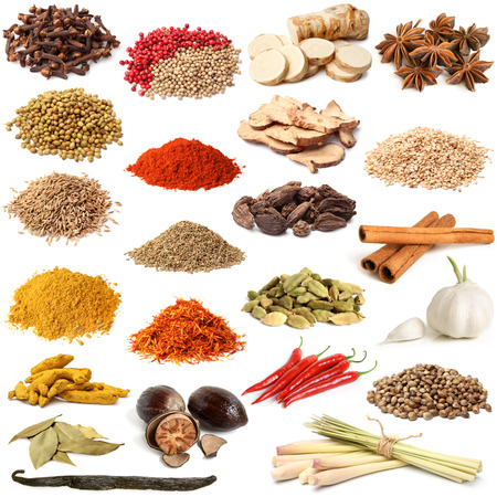 Selection of various spice on white background photo