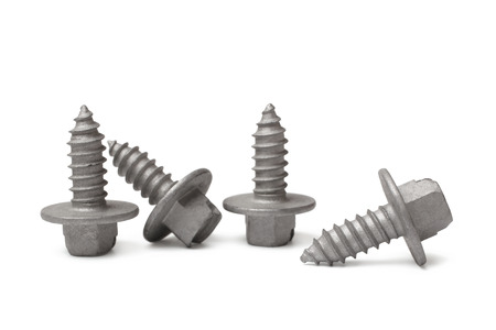screw heads: Screws on white background