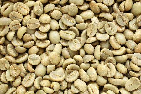 cafe colombiano: granos de café verde, para los fondos y texturas Foto de archivo