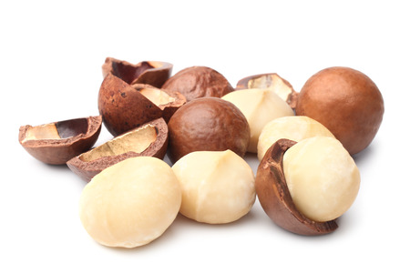 Macadamia nut on white background 스톡 콘텐츠
