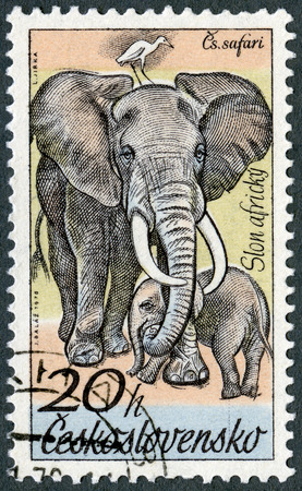 CZECHOSLOVAKIA - CIRCA 1976: A stamp printed in Czechoslovakia shows Elephants, series African animals in Dvur Kralove Zoo, circa 1976