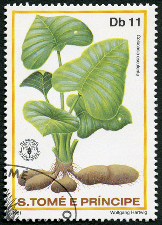 postage stamp: ST. THOMAS AND PRINCE ISLANDS - CIRCA 1981: A stamp printed in St.Thomas and Prince Islands shows  Colocasla esculenta, corms the root vegetables taro, series World Food Day, circa 1981 Editorial