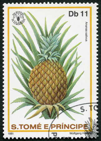 postage stamp: ST. THOMAS AND PRINCE ISLANDS - CIRCA 1981: A stamp printed in St.Thomas and Prince Islands shows  Ananas sativus, pineapple, series World Food Day, circa 1981