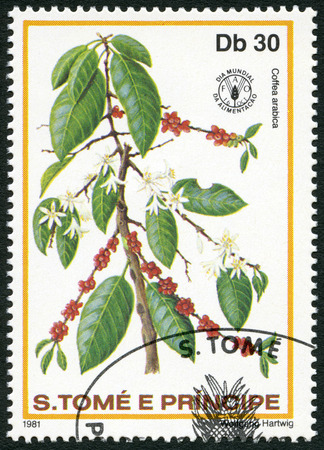 planta de cafe: ST. THOMAS Y PRINCE ISLAS - CIRCA 1981: Un sello impreso en St. Thomas y las islas Príncipe muestra Coffea arabica, series Día Mundial de la Alimentación, alrededor de 1981 Editorial