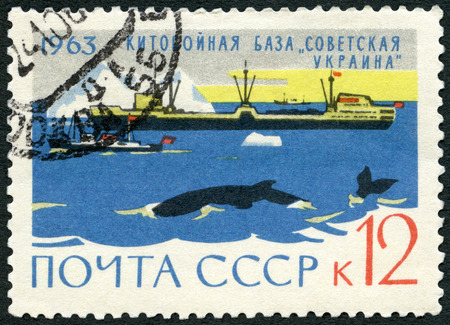 postage stamp: USSR - CIRCA 1963: A stamp printed in USSR shows Whaler floating whale factory Soviet Ukraine and whales, series The Antarctic - Continent of Peace, circa 1963