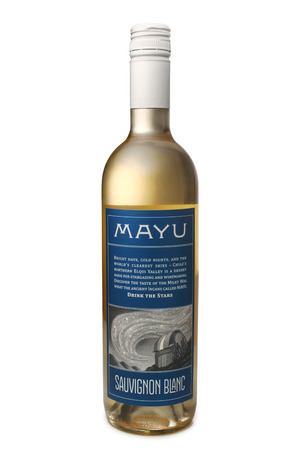 sauvignon blanc: ST. PETERSBURG, RUSSIA - February 09, 2016: Bottle of Mayu Sauvignon Blanc, Elqui Valley, Chile