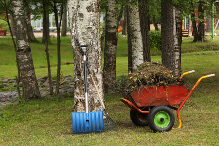 horticulture: Wheelbarrow with garbage in the park