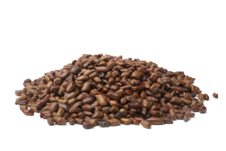 Cassia tora beans on white background