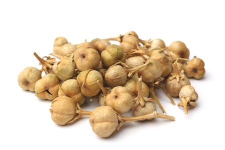 白い背景の上 Peganum harmala フルーツ