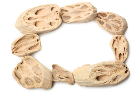 Frame made of dried lotus root on white background Stock Photo