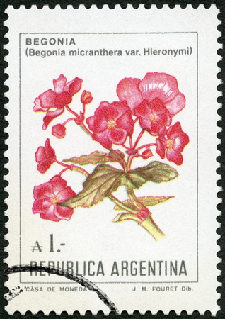 ARGENTINA - CIRCA 1982: A stamp printed in Argentina shows Begonia, circa 1982