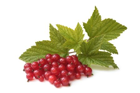 Berries of red currant with leaves on white background Reklamní fotografie