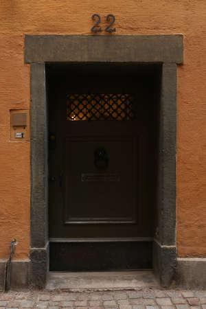 Vintage closed door with lion head door knocker, vertical picture