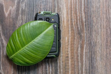 protected plant: phone on the green leaf of a plant