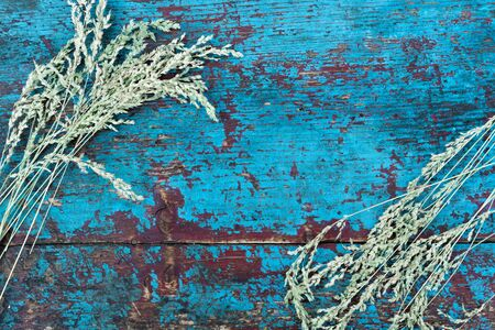 blue background: Hay on blue background Stock Photo