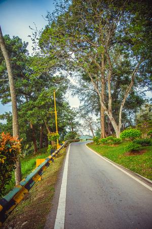 Road in green malaysia rainforest. Malaysia Stock Photo