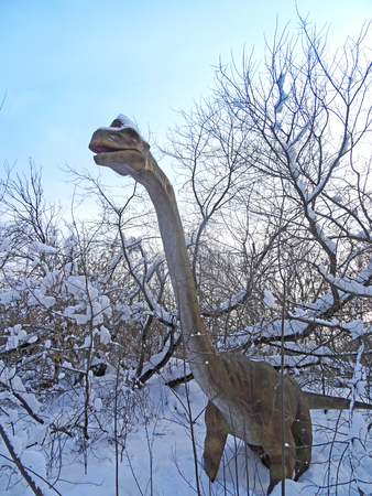 Brachiosaurus altithorax from the Late Jurassic, in the park