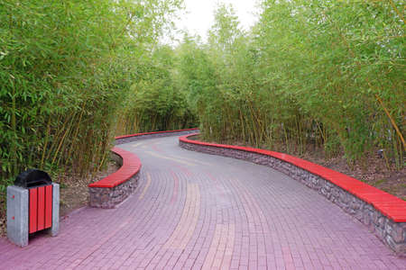 A beautiful alley in the park is paved with tiles with a green lawn on the sides and young bamboo
