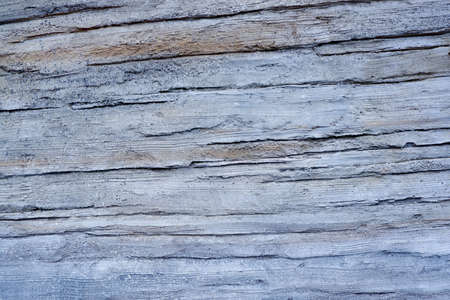 Light gray paint textured wall closeup. Gray background.