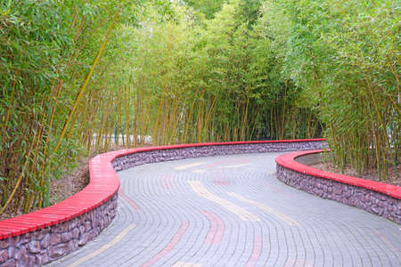 A beautiful alley in the park is paved with tiles with a green lawn on the sides and young bamboo Stock fotó