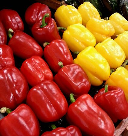 bell peppers: Red and yellow bell peppers Stock Photo