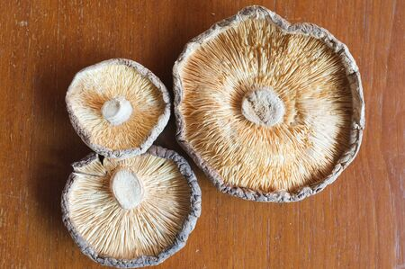 shitake: Dehydrated Shitake Mushrooms Stock Photo