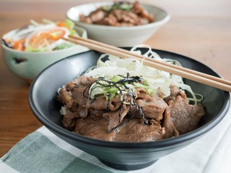 Gyudon and Buta Don: Japanese beef or pork and rice bowls with salad Stock Photo