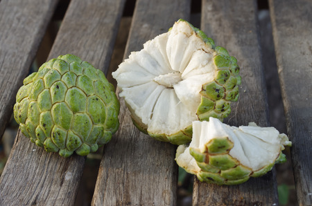 chirimoya: flan de manzana de mi jard�n Foto de archivo