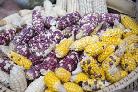 Mix corn in farm, Corn background.