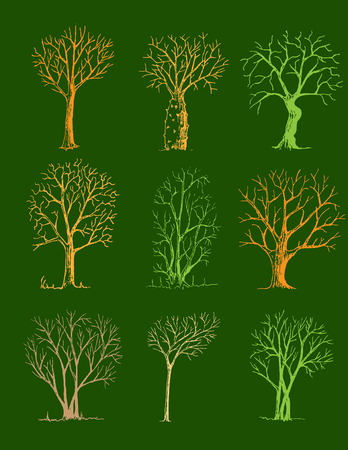 Hand drawn trees isolated, sketch, vintage style trees set on green background 向量圖像