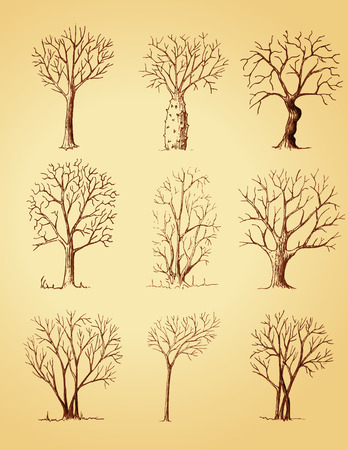Hand drawn trees isolated, sketch, vintage style trees set 向量圖像