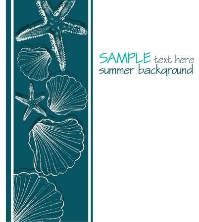 cockle: Summer background with shells