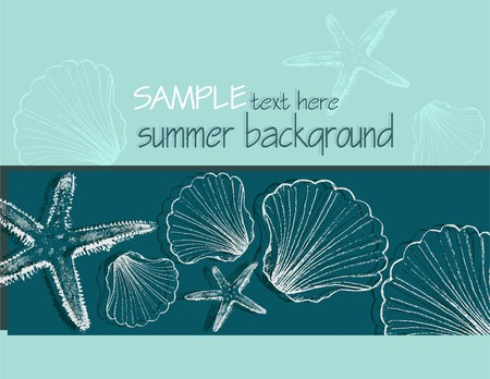 conchas: Summer background with shells