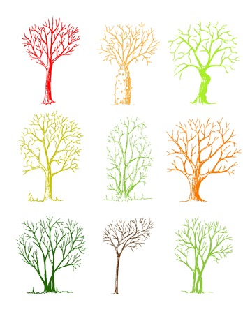 Hand drawn trees isolated, sketch, vintage style trees set on white background 向量圖像