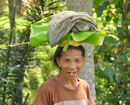 BALI, INDONESIA - JANUARY,09: a farmer woman carrying on top of her head a leaves of banana, on January,09, 2014 in Ubud,Bali, Indonesia. 新聞圖片