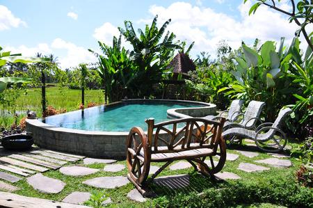 Tropical garden in Bali, Indonesia