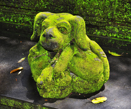 Stone sculpture in the dog shape with moss 스톡 콘텐츠
