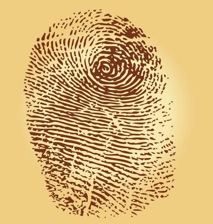 Fingerprints, vector illustration isolated on vintage background