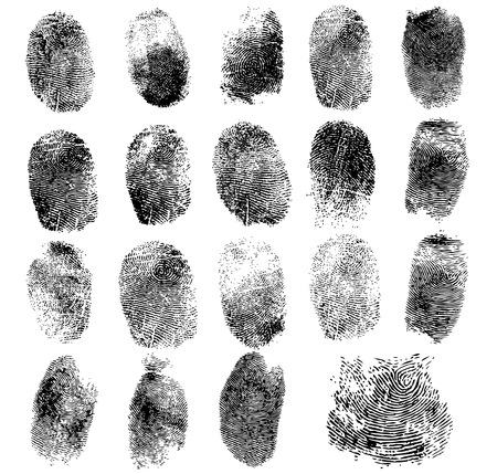 Conjunto de huellas dactilares, la ilustración vectorial aislado en blanco Foto de archivo - 46949111