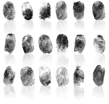 Set of fingerprints, vector illustration isolated on white 일러스트