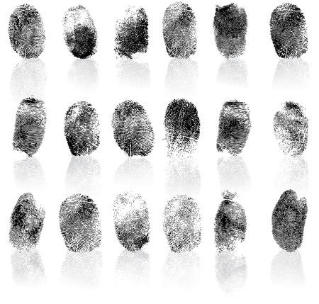 detective: Set of fingerprints, vector illustration isolated on white Illustration
