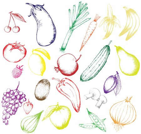 Set of vector hand drawn fruits and vegetables isolated on white