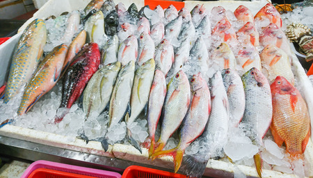 Seafood on ice at the fish market.