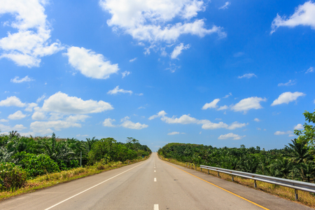 asphalt road through the green field and clouds on blue sky in summer day Imagens