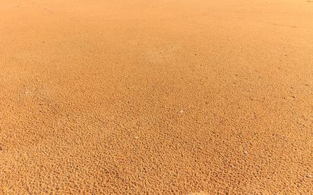 Coarse sand background texture. Macro of coarse sand grains Imagens
