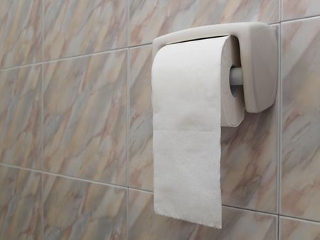 Toilet paper roll on marble tiles wall, Copy space