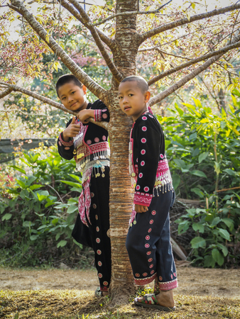 acquaint: CHIANG MAI, THAILAND - JANUARY 26, 2015: Hill tribes child under the tree. Hmong new year festival day.
