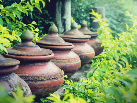 Clay pots used to put drinking water with green leaves background, Traditional of northern Thailand, Selective focus, Vintage filter